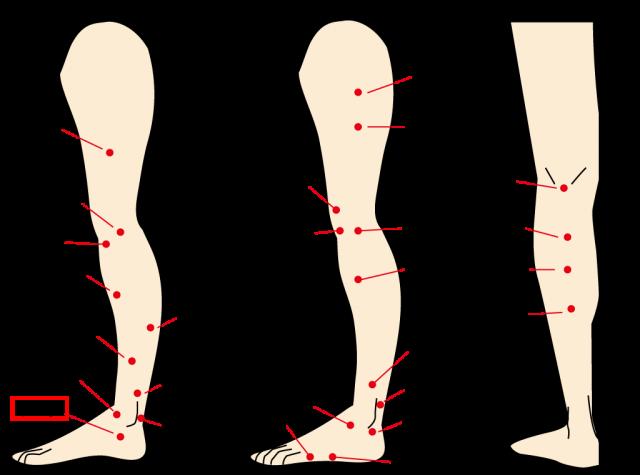 イライラを抑えるのに効く足首のツボ照海