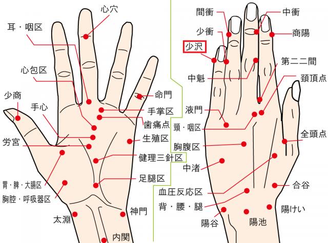 自律神経のバランスを整える小指の爪もみの場所、小沢(しょうたく)