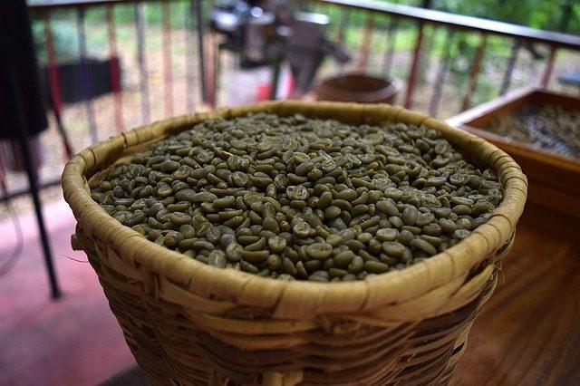グリーンコーヒーの脂肪燃焼効果とダイエット活用法5つ