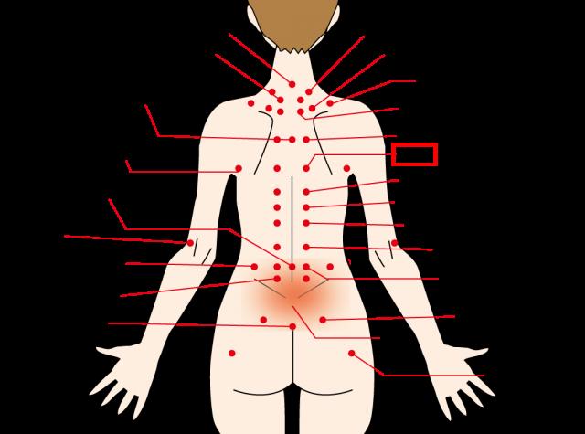 動悸やストレスに効果のある背中のツボ