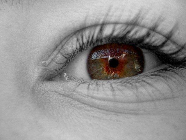 眼底出血が起こる病気の原因と対処法5つ