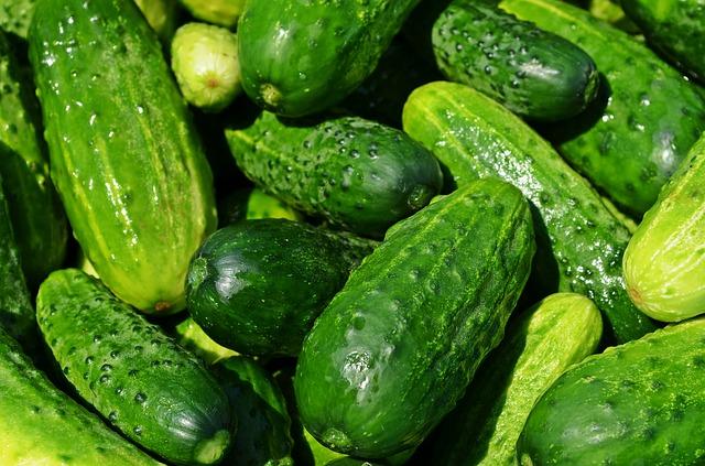 ダイエットに使える!青瓜の栄養価と効果的な摂取法6つ