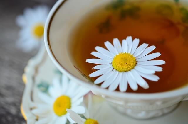 ギムネマ茶に秘められた6つの効用効果をダイエットで活かす方法